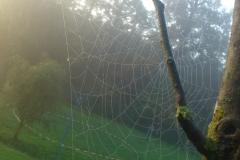 Herbst auf unserem Trainingsgelände