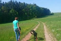 Miteinander spazieren gehen