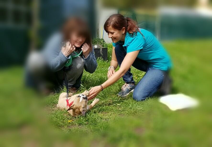 Die Arbeit mit Mensch & Hund ist herausfordernd & macht Spaß